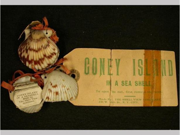 Souvenir, 1920-1950. Seashell, paper. Gift of Bella C. Landauer, 2002.1.4776