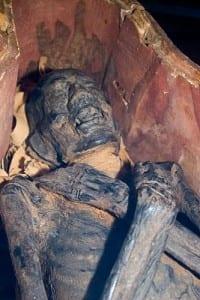 albany mummy_9619 spr 9-21-09 vert