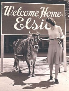 WelcomeBackElsie