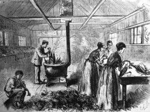 1871 turkey plucking harpers