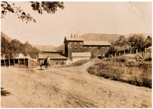 Copake Iron Works cart and horse