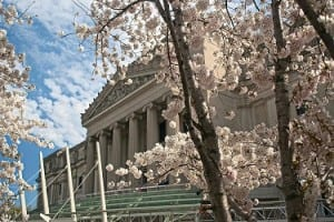 Brooklyn Museum (provided)