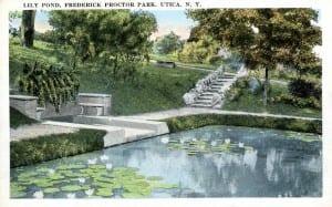 lily pond utica