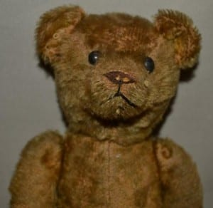 HHS Teddy Bear