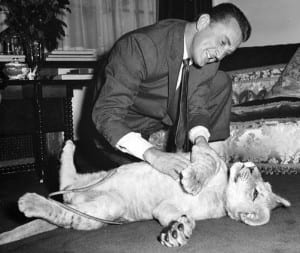 Kirk Douglas with a lion cub named Spartacus presented to him by the director of Southport zoo in 1960 (Publicity Photo)