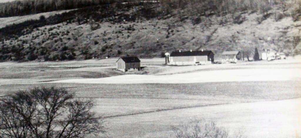 1950 Casey Farm Aerial Surveys or Mason Bros Air Photo