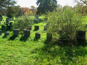 Albany NY GAR Cemetery