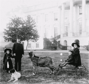 Harrison and children (with Baby McKee in the cart)