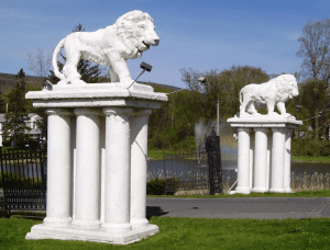 lions at the spruces