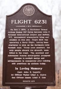 flight 6231