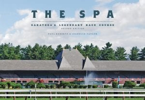 the spa book cover