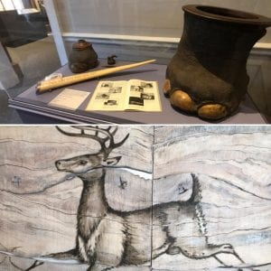 TR's Hunter-Conservationist exhibit