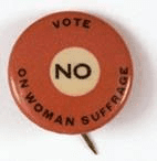 anti suffrage pin