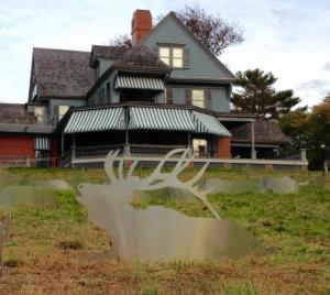 Roosevelt Elk Herd Installation