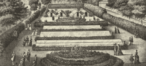 Greenhouses at Oak Hill Nurseries