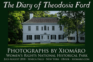 diary of theodosia ford