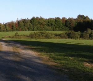 Franklin Rice farm in Martinsburg