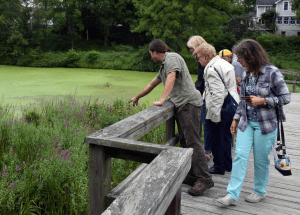 nature walks at the Nyquist Harcourt Wildlife Sanctuary