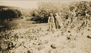 local gardening in the 1930s