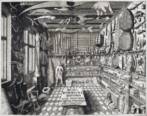 Ole Worms cabinet of curiosities from Museum Wormianum 1655