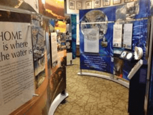 Water/Ways exhibit