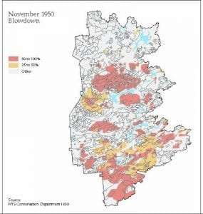 1950 Blowdown Map
