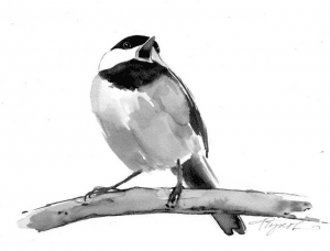 chickadee-by-adelaide-tyrol