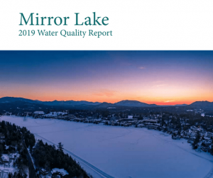 Mirror Lake water quality report