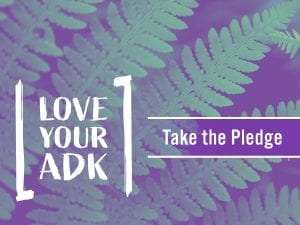 love your adk
