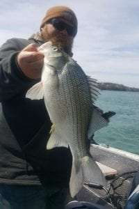 Morgan Fonzi and state record white bass provided by DEC