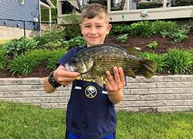 state record rock bass provided by dec